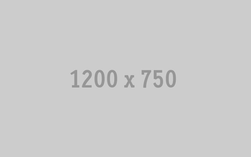 4631337354_62921acb1e_o (1)